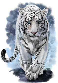 White Tiger by Kajenna on DeviantArt Tiger Sketch, Tiger Drawing, Tiger Artwork, Tiger Painting, Tiger Illustration, Big Cats Art, Cat Art, Animal Paintings, Animal Drawings