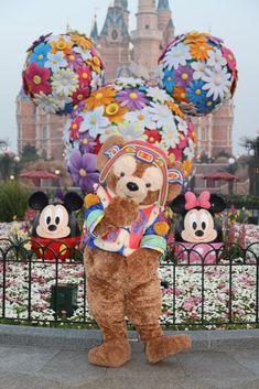 Disney Popcorn Bucket, Duffy The Disney Bear, Disney Parks Blog, Hong Kong Disneyland, Disney Theme, Pooh Bear, Shanghai, Real Life, Bears