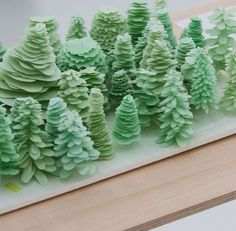 Image result for architecture model plants