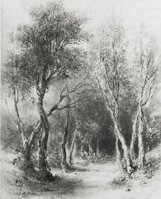 Louis JACQUES MANDE DAGUERRE.   Woodland Scene, n.d.   Pencil on paper.   International Museum of Photography   at George Eastman House, Rochester, N.Y.