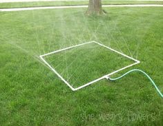 Great idea for the veg garden: all you need is PVC, a drill, and a hose. Water the whole garden in a single row with a cap on the end.
