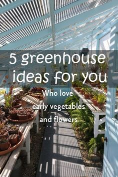 5 greenhouse ideas for you- Who love early vegetables and flowers Lean To Greenhouse, Dome Greenhouse, Greenhouse Ideas, Diy Garden Projects, Wood Projects, Recycled Garden, Unique Gardens, Greenhouses, Growing Vegetables