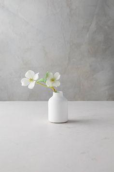Matte Terracotta Bud Vase, Tall by Anthropologie in White, Terrain