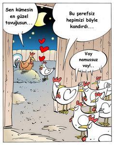 - Sen kümesin en güzel tavuğusun... + Bu şerefsiz hepimizi böyle kandırdı... + Vay namussuz vay!.. #karikatür #mizah #matrak #komik #espri #şaka #gırgır #komiksözler