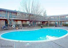 Coralaire Apartments  Pool