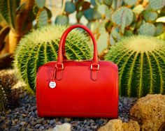 CIAO, ELENA! Nothing says elegance like a chic, structured satchel. See this Italian beauty now at http://www.dooney.com/OA_HTML/ibeCCtpSctDspRte.jsp?minisite=10020respid=22372dbref=d335dbmed=socialdbsource=AOW062314MB812dbname=%20AOW062314MB812%20+(d335)section=66765dbdcc=TVRDTVRD