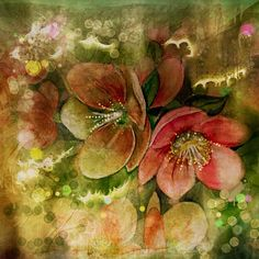 .@kerstinfrankart | Helleborus  Watercolorpainting #procreate #repix #distressedfx #instaart  #in...