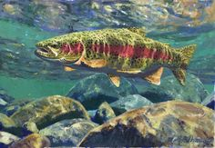 Rainbow   Artist Mike Stidham Medium oil on panel Dimensions 15 x 21