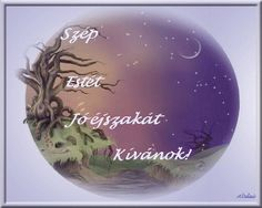 Good Night, Christmas Bulbs, Roses, Holiday Decor, Videos, Blog, Nighty Night, Christmas Light Bulbs, Pink