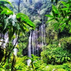 Grand Galet Waterfall Beauty of Nature  #waterfall #nature #langevin #amazing #beautiful  #reunionisland #summertime #974 #paradise #travel #instatravel #mytravelgram #instapassport #lareunion #gotoreunion #island #amazing #beautiful #lareunion #gotoreunion #island #travelgirl #travel #reunionisland #iledelareunion #team974 #weare974 #lareunionlela #vanillaislands #reunionparadis by ornellajoy