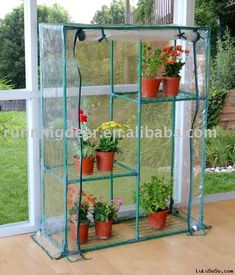 Indoor Greenhouse for herbs and spices!