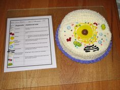 Animal Cell Cake for Science Project