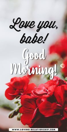 Good Morning Boyfriend Quotes, Good Morning Handsome Quotes, Good Morning Love Text, Romantic Good Morning Messages, Beautiful Morning Quotes, Morning Inspirational Quotes, Morning Message For Him, Morning Texts For Him, Love Message For Him