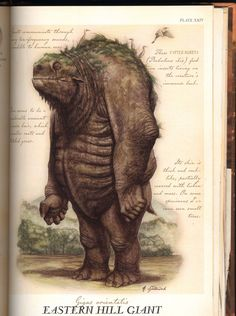 GIANT I think I've seen this guy pass my trail . or at least my horse thinks he/she has . Eastern Hill Giant, by Tony DiTerlizzi Mythical Creatures Art, Mythological Creatures, Magical Creatures, Fantasy World, Fantasy Art, Spiderwick, Fantasy Monster, Creature Concept, Field Guide