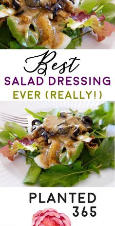 The is, sericously, the BEST Salad Dressing, Ever (Really!) I had to use what I had and so it's made from a little bit of this and that. It's delicioys and super flavorful! Diet Salad Recipes, Salad Dressing Recipes, Oil Free Salad Dressing, Best Salad Dressing Recipe Ever, Raw Vegan Recipes, Vegetarian Recipes, Healthy Recipes, Healthy Food, Raw Salad Dressings