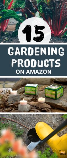 Keep Your Lawn Looking Fresh with These 15 Gardening Products On Amazon Amazon Home Decor, Gardening Gloves, Cool Tools, Lawn, Floral Design, Fresh, Plants, Products, Floral Patterns