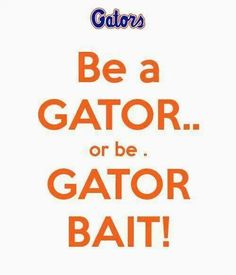 All opposing teams are Gator bait. Gator Basketball, Florida Gators Softball, Gator Football, College Football, Volleyball Team, Florida Gators Wallpaper, School Cheerleading, Florida Girl, Florida Living