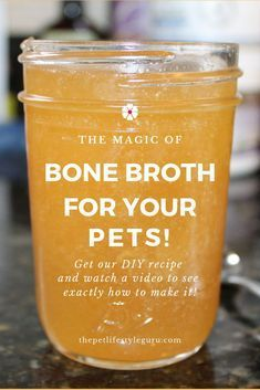 Your pet will absolutely love our DIY bone broth recipe - it's easy to make and . Your pet will absolutely love our DIY bone broth recipe - it's easy to make and super nutritious! Come check it out at The Pet Lifestyle Guru! Puppy Treats, Diy Dog Treats, Homemade Dog Treats, Healthy Dog Treats, Dog Biscuit Recipes, Dog Treat Recipes, Dog Food Recipes, Make Dog Food, Pet Food