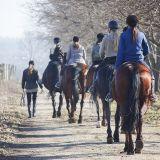 Do you recognise any of the following no-nos frequently dispensed to nervous horse riders? Here's why they're often more hurtful than helpful — and what others can do to support you with overcoming your fears.