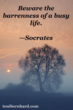 """""""Beware the barrenness of a busy life."""" —Socrates"""