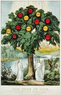 The Tree of Life by Currier & Ives | Library of Congress