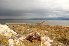 Lago Salgado visto a partir de Antelope Island, Utah