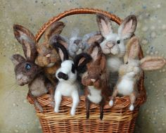 Time to make the Bunnies!