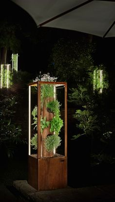 CUBE serves as a lit stage for your plants - better acoustics, air quality and atmosphere are measurable and used in offices and public areas as well as outdoor Hydroponic Gardening, Hydroponics, Hanging Plants, Indoor Plants, Green Terrace, Garden Shelves, Grow Lamps, Wooden Planter Boxes, Plant Box