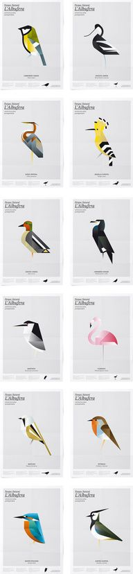 There's a hoopoe, right-hand column, second from the top: Game Design, Design Art, Inspiration Artistique, Plakat Design, Graphic Art, Graphic Design, Design Poster, Bird Illustration, Illustrations And Posters