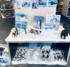 It's our November Open Saturday next week at in Huddersfield. Come & explore our new Polar & Christmas displays for the winter months! Frozen Activities, Eyfs Activities, Christmas Activities, Winter Activities, Penguin Facts, Montessori Science, Early Years Classroom, Eyfs Classroom, Class Displays