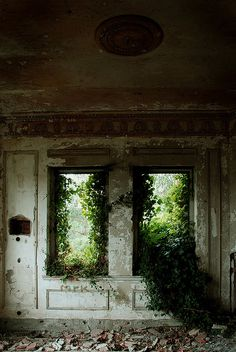 abandoned ~ There's something hauntingly beautiful about nature reclaiming spaces abandoned by man. It's like a reminder that we are temporary guests. ~ ALW