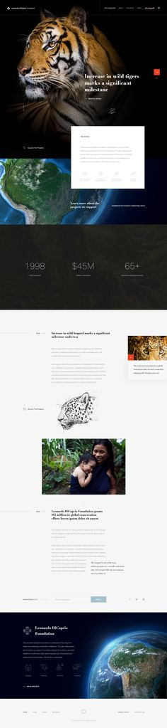 Fundation homepage - #website #inspiration