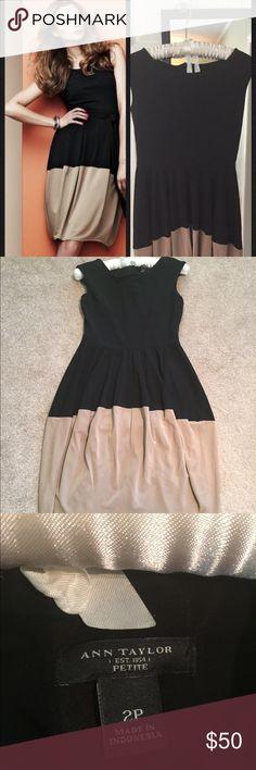 Ann Taylor dress, Black and Tan, 2p Beautiful Ann Taylor dress in Black and Tan, size 2p, worn once Ann Taylor Dresses