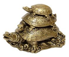 The tortoise is a Feng Shui symbol of wealth and stability for the home.