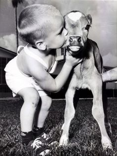 I grew up on a dairy farm.  Loved the pottie calves........