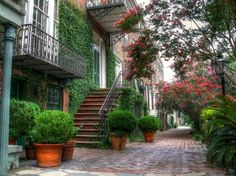 A pretty walkway down a typical historic district street. I want to go to Savannah, GA Downtown Savannah, Visit Savannah, Savannah Georgia, Savannah Chat, No Boys Allowed, What Is Hot, Tybee Island, Southern Style, Southern Charm