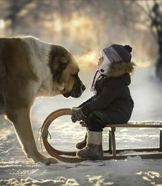 ENDEARING PHOTOS CAPTURE THE BOND BETWEEN CHILDREN AND ANIMALS IN THE RUSSIAN COUNTRYSIDE Elena_Shumilova_13