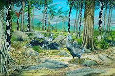 animals, mauritius, birds, ecology