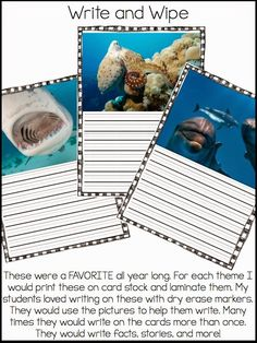 Laminated animal pictures to help students write facts, stories, opinions in dry erase marker ~ for practice in writing centers ~ 1st grade