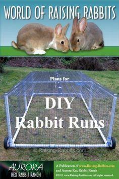 DIY rabbit runs, for raising rabbits. Raising Rabbits For Meat, Meat Rabbits, Rabbit Farm, Rabbit Run, Bunny Cages, Rabbit Cages, Rabbit Feeder, Building A Dog Kennel, Vivarium