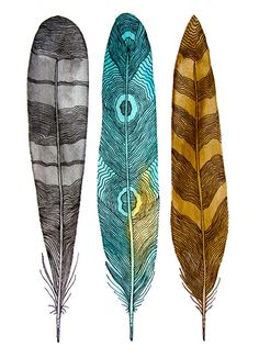 Driftwood Feathers