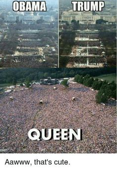 I gathered all memes I could find about Queen and I put them in that book Enjoy! Read Queen from the story QUEEN MEMES by Roger_Hot_Drummer with reads. These memes ar. Beatles, Bryan May, Queen Meme, Funny Memes, Jokes, Memes Humor, Queen Freddie Mercury, Freddie Mercury Funeral, Freddie Mercury Meme