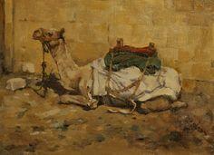 Pauline Roche - Egyptian Camel