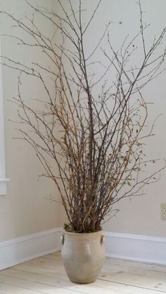 Natural tall branches in vintage crock fill an empty corner.