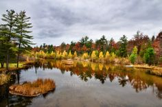 Late Fall River Reflections