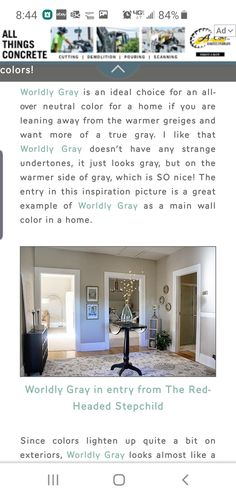 Wordly Gray, Neutral Colors, All Things, Concrete, Grey, Home, Ash, Gray, Ad Home