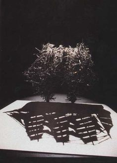Belgian artist Fred Eerdekens creates incredible shadow sculptures. When light filters through them, hidden messages are unveiled through bent wires, cotton clouds, cardboard boxes, and even living plants. The artist's play on words and images give rise to a surprising aesthetic effect, while the kinds of materials he chooses is reminiscent of poetry.
