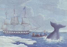 """""""BEAVER"""" IN ARCTIC WATERS / artist unidentified, United States, 1800–1825, watercolor on paper, 18 x 25 3/8 in., American Folk Art Museum, gift of Mr. and Mrs. Martin H. Landey, 1980.36.2, photo by Terry McGinnis"""
