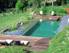 Natural Swimming Ponds, Natural Pond, Swimming Pools Backyard, Swimming Pool Designs, Lap Pools, Pool Landscaping, Indoor Pools, Pool Decks, Small Backyard Pools