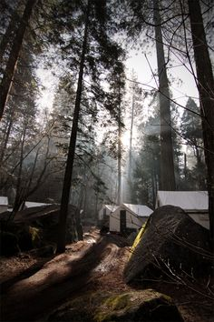 Curry Village, Yosemite National Park. Camp Curry celebrated its 100th anniversary in 1999 and it still offers park visitors lodging in the shadow of Glacier Point and Half Dome.